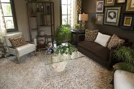 This Living Room Features An Exotic Look Courtesy Of Animal Print Pillows Thick Shag