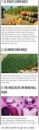 Pumpkin Patch El Paso by 25 Best Memes About Corn Maze Corn Maze Memes