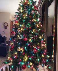 Fraser Fir Christmas Trees For Sale wisconsin fraser fir christmas tree tree classics