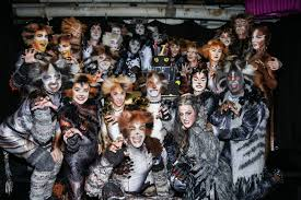 cats on broadway cats revival celebrates one year on broadway playbill