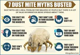 Dust Mite Bed Covers by Dust Mite Information Know The Enemy
