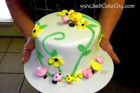 Cake Decorating Books For Beginners by Salt Cake City Classes