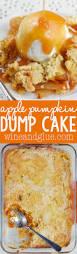 Cake Mix And Pumpkin by 17 Best Images About Pumpkin Patch On Pinterest Pumpkin Pies