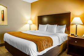 Just Beds Springfield Il by Comfort Suites 77 9 4 Updated 2017 Prices U0026 Hotel Reviews