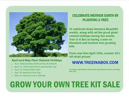 April Tree Promotion - Tree In A Box