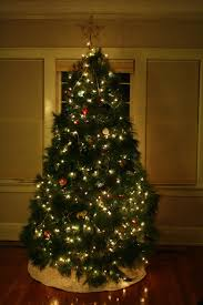 Colorado Springs Christmas Tree Permit 2014 by Fragments Of Grace December 2011
