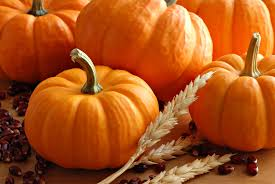Pumpkin Patch Reno by Halloween Family Fun In Reno Tahoe Visitrenotahoe Com
