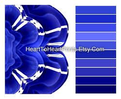 Royal Blue Bathroom Wall Decor by Best 25 Royal Blue Bathrooms Ideas On Pinterest Delphinium