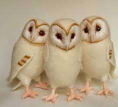Three More Baby Barn Owls | Felt Baby, Needle Felting And Wool Felt Barn Owl Focus On Cservation Best 25 Baby Ideas On Pinterest Beautiful Owls Barn Steal The Show As Day Turns To Night At Heartwood Family Ties Owl Chicks Let Their Hungry Siblings Eat First The Perch Uncommon Banchi Baby Coastal Home Giftware From Horizon Stock Image Image Of Small Young Looking 3249391 You Know Birdnote Banding By Alex Lamoreaux Nemesis Bird