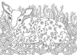 Enchanted Forest Colouring PagesColoring
