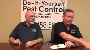 Drain Flies In Bathtub by Get Rid Of Drain Flies Drain Fly Control Products Youtube