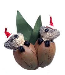 Christmas Tree Species Nz by Twin Koala Gumnut Babies Christmas Tree Decoration The Land Down