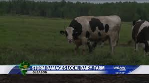Dresser Wi Weather Forecast by Local Dairy Farm Suffers Damage In Severe Weather