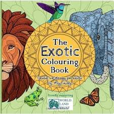 How To Self Publish An Adult Coloring Book With Meg Cowley