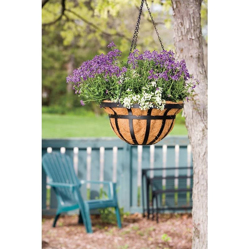 Living Accents Hanging Basket, Black - 14 in