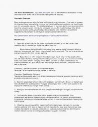 Skills And Accomplishments Resume Examples Luxury Executive Summary Sample For Beste Wort