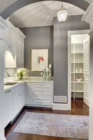 kitchen with gray walls home design