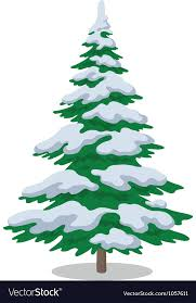 Christmas Tree With Snow Vector Image