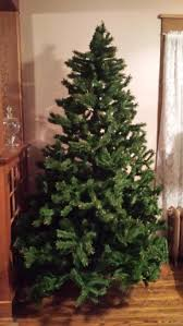 Christmas Tree Shop North Attleboro by The 25 Best Pine Cones For Sale Ideas On Pinterest Mulch For