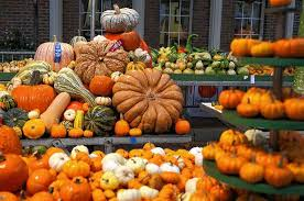 Columbus Ohio Pumpkin Patches by The Go To Guide Fall Family Fun News Columbus Parent