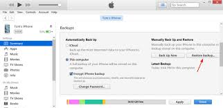 Tutorial How to Restore iPhone from Encrypted iTunes Backup