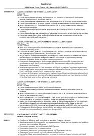 100 Education On A Resume Special Ssistant Samples Velvet Jobs
