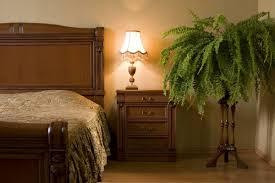 welche blumen können im schlafzimmer aufbewahrt werden 9