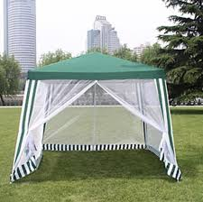 Ace Canopy A Shade Canopy is a Must for Spring