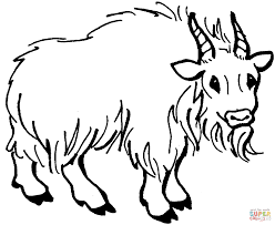 Pin Mountain Goat Clipart Colouring 15