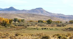 Tule Springs Fossil Beds by Explore Your Nevada State Parks