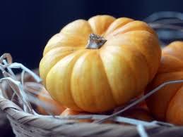 Roasting Pumpkin For Puree by Pumpkin Puree Recipe Alton Brown Food Network