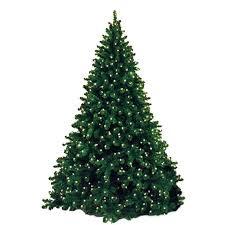 Queens Of Christmas WL TRNAT 15 LWW Ft Artificial Tree
