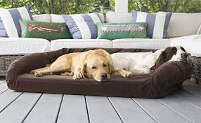 Chew Proof Dog Beds by Toughchew Durable Chew Proof U0026 Indestructible Dog Beds Orvis