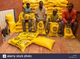 100 Truck Loading Games Rice Processing And Packing Factory Loading Senegal Stock