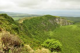 what does chambre in birdwatching trip azores by nature