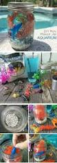 Petco Flower Ball Aquarium Decor by Best 25 Mini Aquarium Ideas On Pinterest Food Crafts Jello