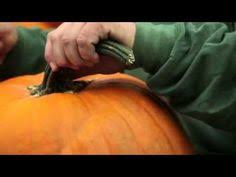 Funny Pumpkin Carvings Youtube by 100 Funny Pumpkin Carvings Youtube 77 Best Carving Pumpkins
