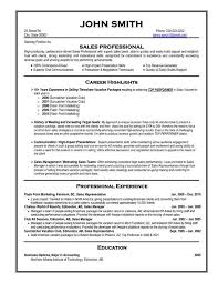 Professional Resume Template Sales