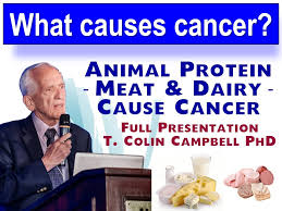 Pumpkin Seeds Prostate Cancer by Prostate Cancer Full Health Secrets