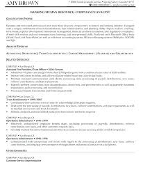 Human Resource Resume Samples Director Of Resources Examples Sample