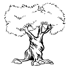 Tree Trunk Coloring Page Related Keywords Suggestions