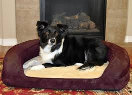 Top Rated Orthopedic Dog Beds by Best Orthopedic Dog Beds Review Nostalgic Retro Newspaper Dog Bed
