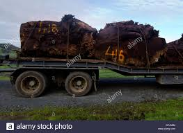 Old Kauri Tree Trunks On Log Truck In Northland New Zealand Stock ... Paul Roy Aftercare Support Nitco Northland Industrial Truck Co Industries Polar Rvs For Sale Trader January February 2018 By Nztrucking Issuu Jcb Quality Cstruction Equipment Avant Inc And Accsories Tim Mclaughlin Account Manager Derrick Swimm Territory Sponsors Earthway Rail Park Competitors Revenue Employees Owler Supporters Dont Waste Ladont La