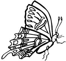 Free Tiger Swallowtail Butterfly Coloring Pages