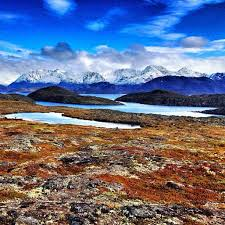 9 best tundra images on pinterest arctic tundra greenland