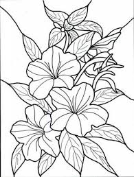 1000 Ideas About Flower Coloring Pages On Pinterest Colouring With The Most Awesome For