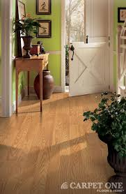 Empire Carpet Laminate Flooring by 18 Best Laminate Flooring Images On Pinterest