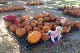 Pumpkin Patch Church Wilmington Nc by Hampstead Nc Real Estate Blog