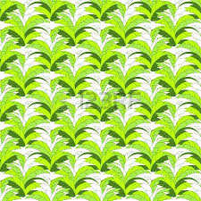 Jungle Print Wallpaper Vector Tropical Leaves Seamless Hand Drawn Pattern Plant Floral Green