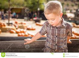 Pumpkin Patch Daycare Kearney by Find A Trs Provider Texas Rising Star